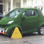 Grass Car Gets Booted